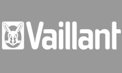 Vaillant_grey_250x150